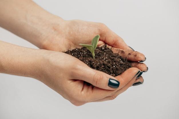 Apa itu CSR dan 6 Manfaatnya Bagi Bisnis